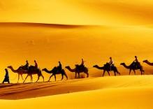 LE SAHARA TUNISIEN