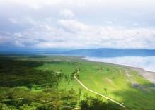 SAFARI KENYA / TANZANIE